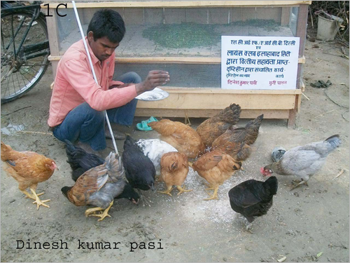 Graphic: The confident poutry farmer - Dinesh Kumar